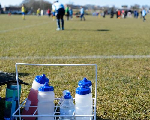 Sport England's playfield protection measures 'working in most cases'