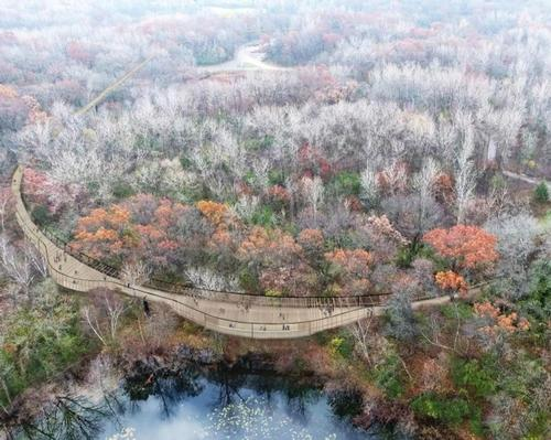 The proposed Treetop Trail would be 1.3mi (2.1km) long / Minnesota Zoo