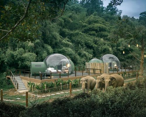 The bubbles are raised up onto wooden platforms to provide the best possible views of passing elephants / Anantara Golden Triangle Elephant Camp & Resort
