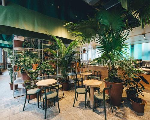 A lack of greenery in the area inspired the idea of creating a 'green oasis' in K5 Tokyo